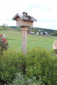 They are so Biodynamic even their birdhouse has a living roof.
