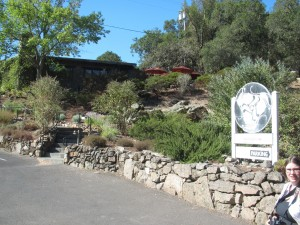 Ravenswood winery